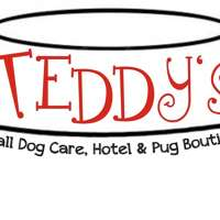 Teddy's Dog Care logo