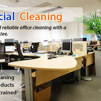 Local Cleaners 4 U Ltd