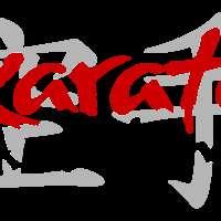Karate Academy logo
