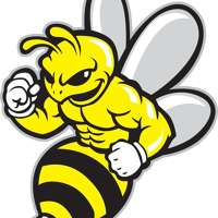 BEE FIT GYM logo