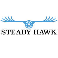 Steady Hawk logo