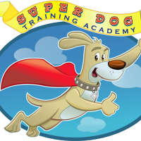 Super Dog Training Academy logo