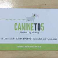 Canine To 5 logo