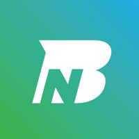Ninjabear Design Studio logo