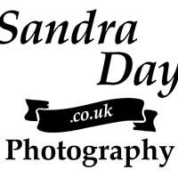 Sandra Day photography logo