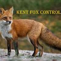 Kent Fox Control  logo