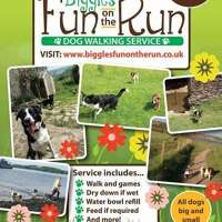 Biggles fun on the run logo