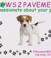 Paws 2 pavement hinckley logo