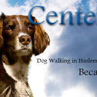 Centerbarcs logo