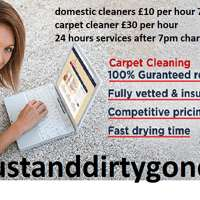 dustanddirtygone.co.uk