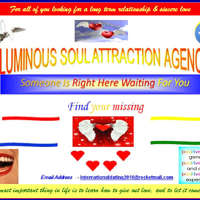 Luminous Soul Attraction Agency logo