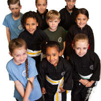 Kung Fu Schools Horsham logo