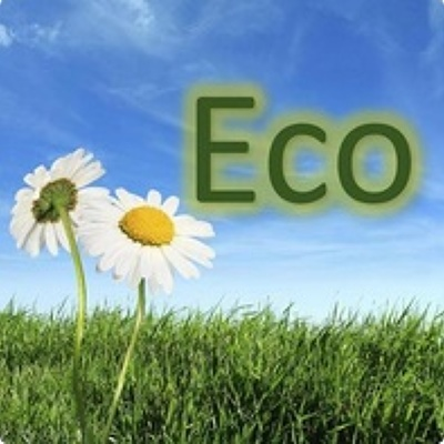 Eco Painting and Deocorating (ecopd.org)