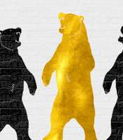 Gold Bear Removals logo