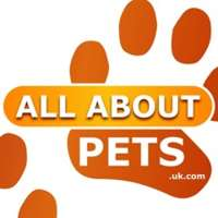 All About Pets logo