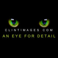 Clint Images logo