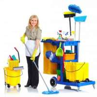 Cleaners Welwyn