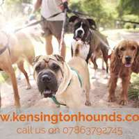 Kensington Hounds logo