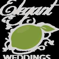 Elegant Lime Weddings logo