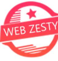 Webzesty Pvt Ltd logo