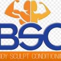 Body Sculpt  logo