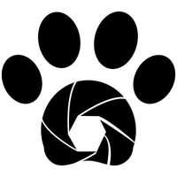 Dogography logo