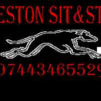 Ilkeston sit and stay logo