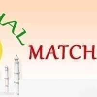 TajmahalMatchmaking logo