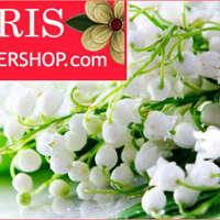 Parisflowershop logo