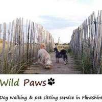 Wild Paws logo