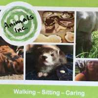 Animals Inc. logo