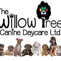 The Willow Tree Canine Daycare logo