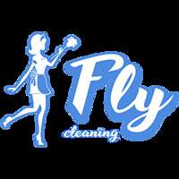 Fly Cleaning LTD logo