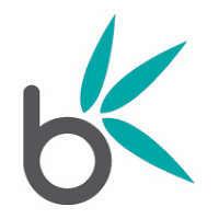 Bamboo Nine logo