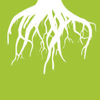 Root Marketing logo