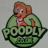 Poodly Care Group Ltd logo