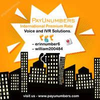 payunumbers logo
