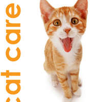 Jaymie's Cat Care logo
