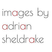 Images by Adrian Sheldrake logo