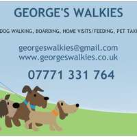 George's Walkies logo