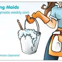 Moving Maids