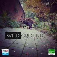 Wild Ground