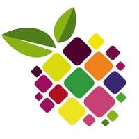 The Fruit Group Ltd