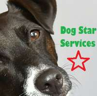 Dog Star Services