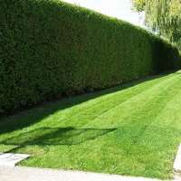 Woodside Garden Services