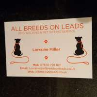 All Breeds On Leads