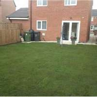 ck turfing services