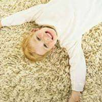 Lee Bassett Carpet & Upholstery Cleaning