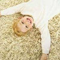 Lee Bassett Carpet & Upholstery Cleaning