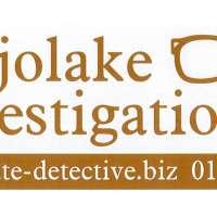 Mojolake Investigations logo